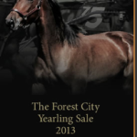 Forest_City_Yearling_Sale_2013