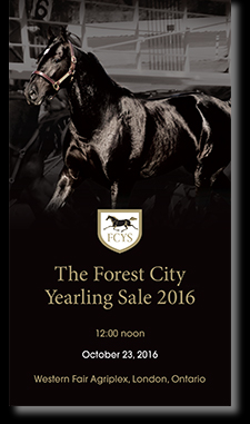 forest_city_2016